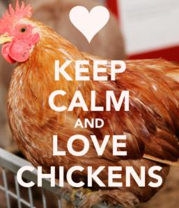 lovechickens