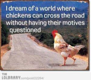 chickdr