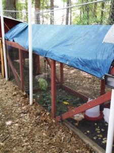 rain/shade tarp